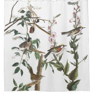 Warbler Wren Birds Audubon Wildlife Shower Curtain