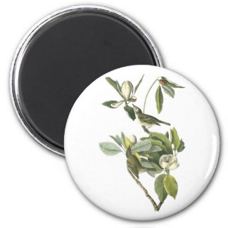 Warbling Vireo by Audubon 2 Inch Round Magnet