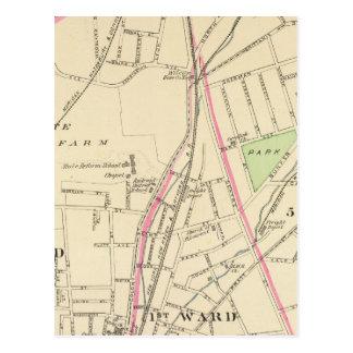 Ward 15, New Haven Postcard