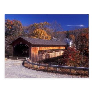 Ware Gilbertville Covered Bridge in Autumn Postcard
