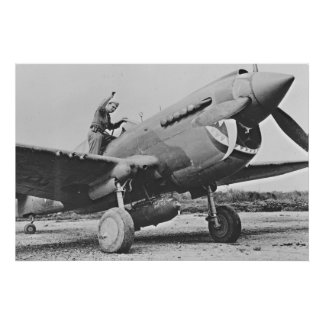 Warhawk P40 1943 Impresiones