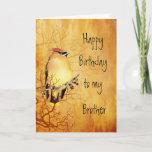 "Warm Copper Cedar Waxwing Bird Brother Birthday Card<br><div class=""desc"">Warm Copper Cedar Waxwing Bird l Birthday for your Brother</div>"