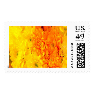 Warm Flowers Large Stamps