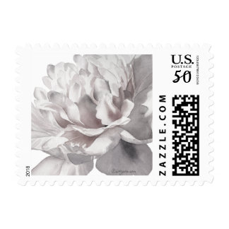 Warm Gray Peony Small Wedding Postage