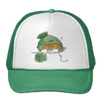 Warm Knit Cap and a Kitten Trucker Hat