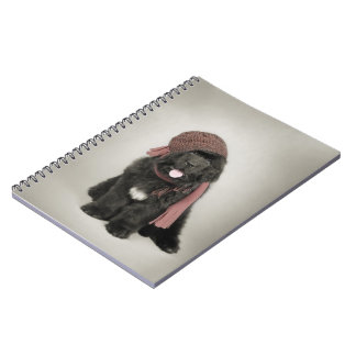 Warm Notebook
