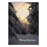 Warm Wishes Christmas Snowfall Cards