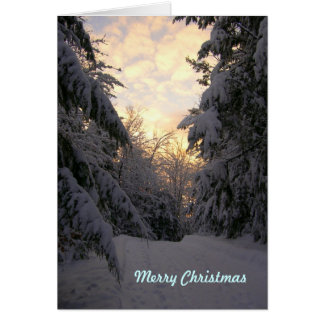 Warm Wishes Christmas Snowfall Cards
