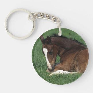 Warmblood Foal Laying Down Keychain