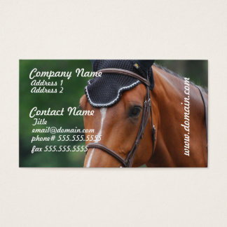 Warmblood Horse Business Card