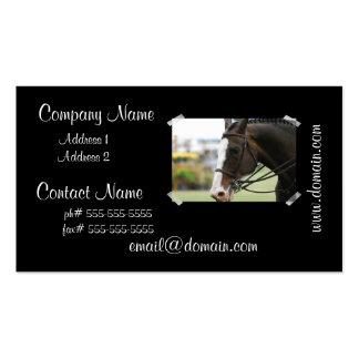 Warmblood Horse Business Card