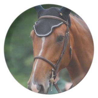 Warmblood Horse Plate