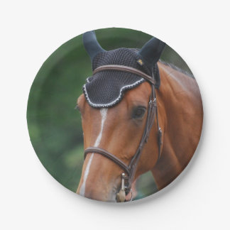 Warmblood Horse 7 Inch Paper Plate