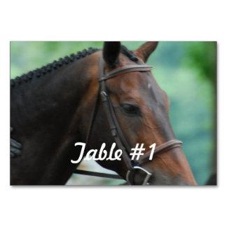 Warmblood Horse Table Cards