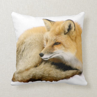 """Warmest Winter Jacket"" Pillow"