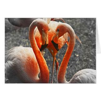 Warming Love Greeting Cards