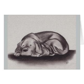 """Warmth"" Labrador & Cat Greeting Card"