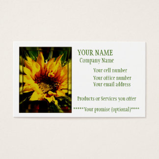 Warmth of the sun business card
