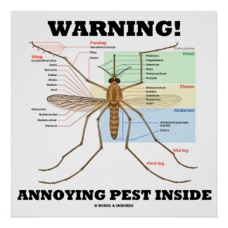 Warning Annoying Pest Inside Mosquito Anatomy Poster