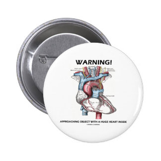 Warning! Approaching Object With Huge Heart Inside Pins