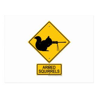 Warning Armed Squirrels Postcard