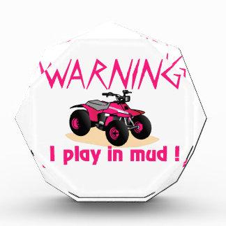 Warning Acrylic Award