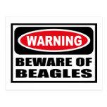 Warning BEWARE OF BEAGLES Postcard