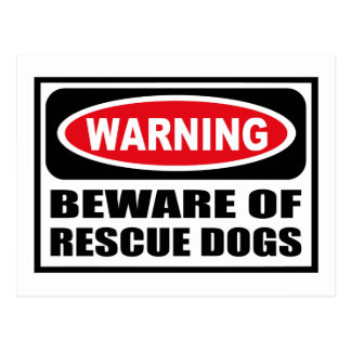 Warning BEWARE OF RESCUE DOGS Postcard