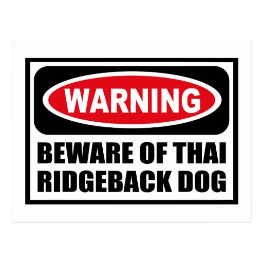 Warning BEWARE OF THAI RIDGEBACK DOG Postcard
