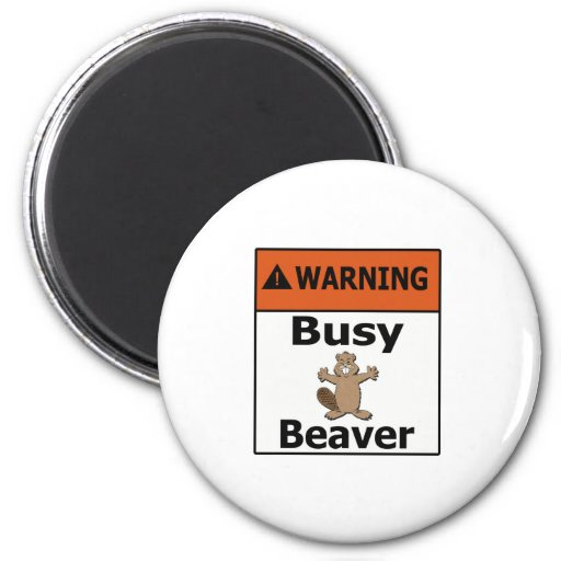 Warning Busy Beaver 2 Inch Round Magnet