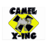 WARNING CAMEL CROSSING X-ING GIFTS FUNNY ZOO POST CARD