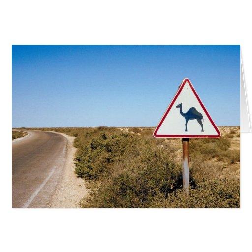 Warning Camels Ahead Greeting Card