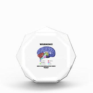 Warning! Discombobulated Mind Inside (Brain Humor) Acrylic Award