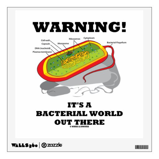 Warning! It's A Bacterial World Out There Room Decals