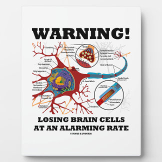Warning! Losing Brain Cells At An Alarming Rate Plaque