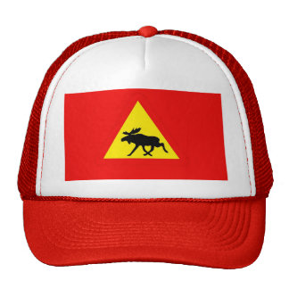 Warning of the moose trucker hats