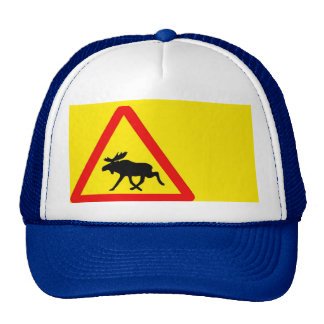 Warning of the moose mesh hats