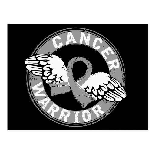 Warrior 14C Brain Cancer Postcard