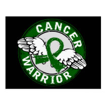 Warrior 14C Liver Cancer Postcard