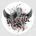 Warrior 16 Juvenile Diabetes Sticker