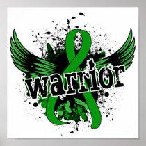 Warrior 16 Kidney Disease Poster