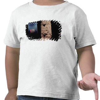Warrior, from the Toltec Culture Tshirt