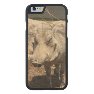 warthog-5.jpg funda de iPhone 6 carved® de arce