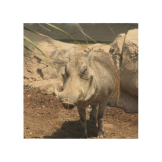 warthog-5.jpg cuadro de madera
