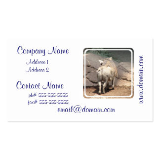 Warthog Behind Double-Sided Standard Business Cards (Pack Of 100)