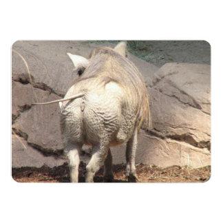 "Warthog Behind 5"" X 7"" Invitation Card"