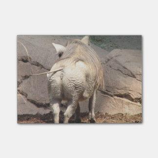 Warthog Behind Post-it Notes