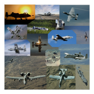Warthog collection poster