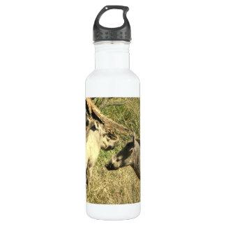 Warthog Design 24oz Water Bottle
