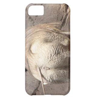 Warthog detrás funda para iPhone 5C